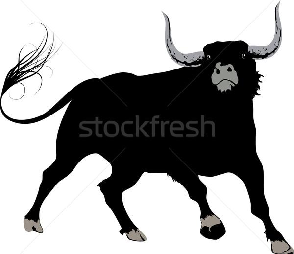 Fekete bika nagy terv művészet erő Stock fotó © vectorArta
