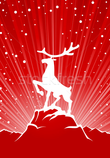Reindeer Stock photo © vectorArta