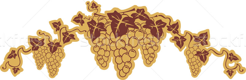 Grapes symbol Stock photo © vectorArta