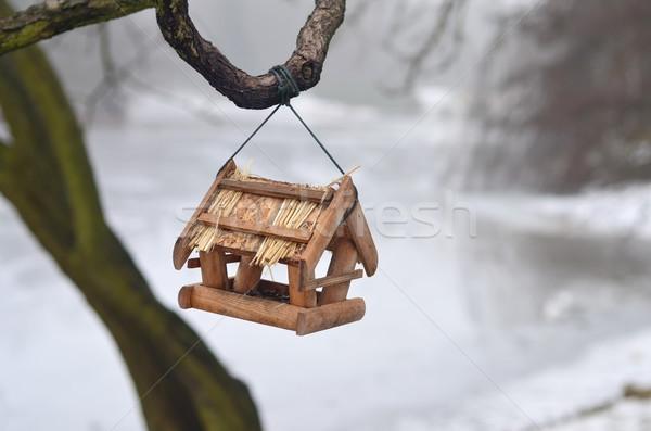 Oiseau arbre saison d'hiver neige Photo stock © Vectorex