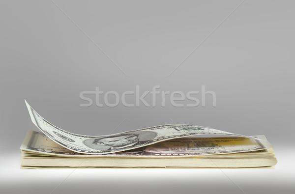 Dollár boglya amerikai szürke üzlet bank Stock fotó © Vectorex