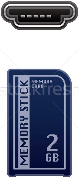Geheugen kaart stick computer hardware Stockfoto © Vectorminator