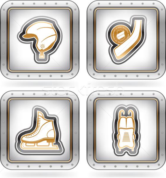 зима спортивных иконки объекты шоу различный Сток-фото © Vectorminator