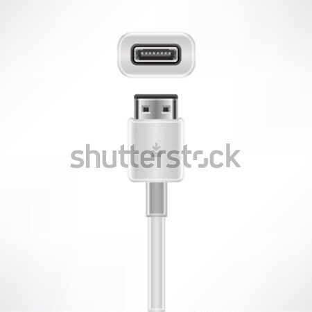 LAN Cable Stock photo © Vectorminator
