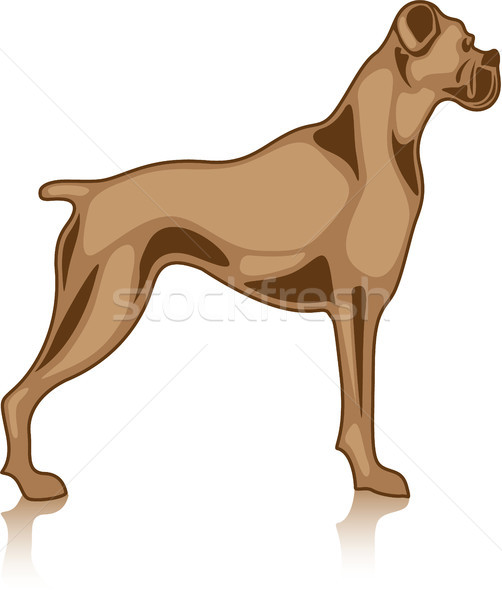 Bulldog animal vector eps image illustration Stock photo © vectorworks51