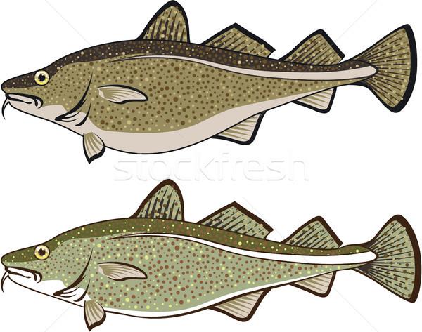 óceán hal clipart kép természet zöld Stock fotó © vectorworks51