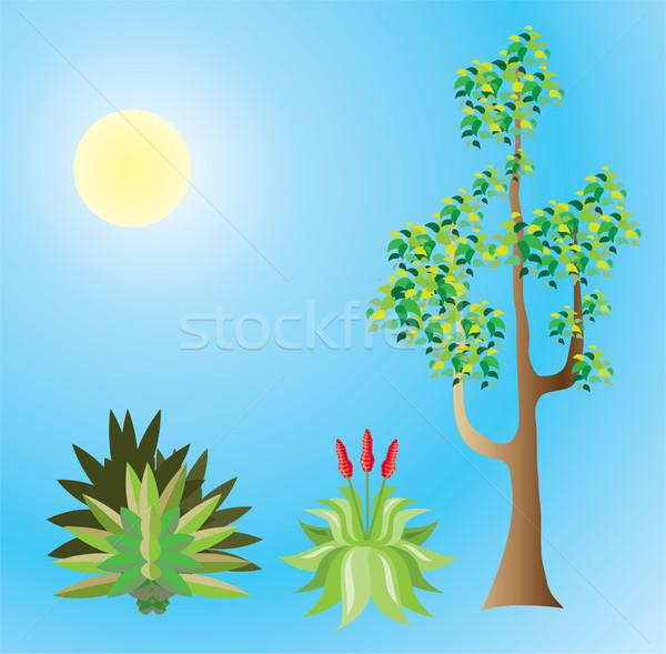 Tropische planten vector bestand boom gras Stockfoto © vectorworks51