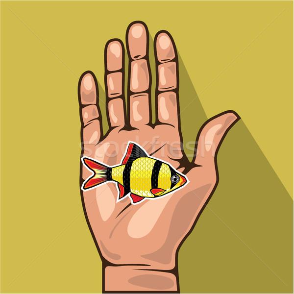 手 魚 クリップアート eps ファッション 海 ストックフォト © vectorworks51