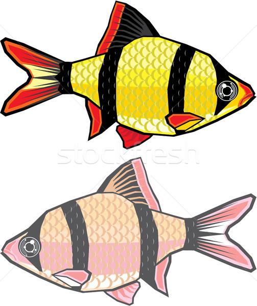 аквариум рыбы вектора изображение воды глаза Сток-фото © vectorworks51