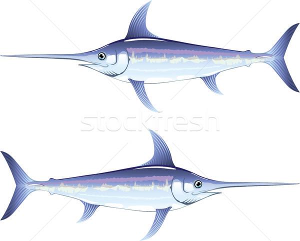 Zwaardvis clipart afbeelding zee vlees mooie Stockfoto © vectorworks51