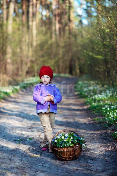 Primavera immagine ragazza basket fiori di primavera legno Foto d'archivio © velkol