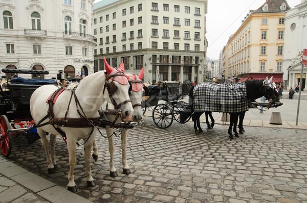 In Vienna Stock photo © velkol