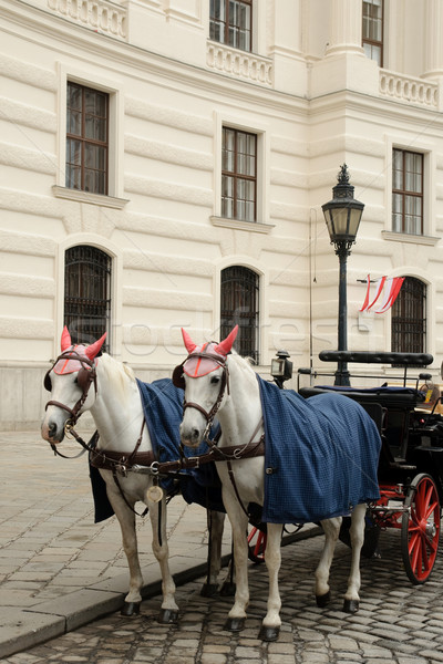 Horses Stock photo © velkol