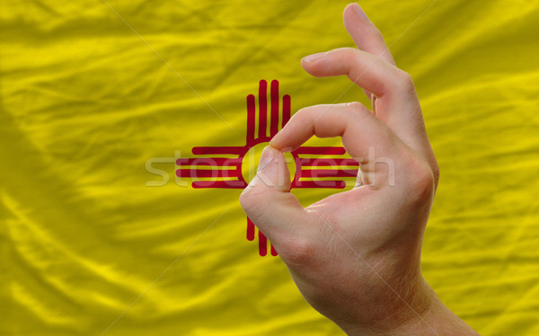 ok gesture in front of new mexico us state flag Stock photo © vepar5