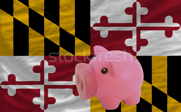 piggy rich bank and  flag of american state of maryland    Stock photo © vepar5