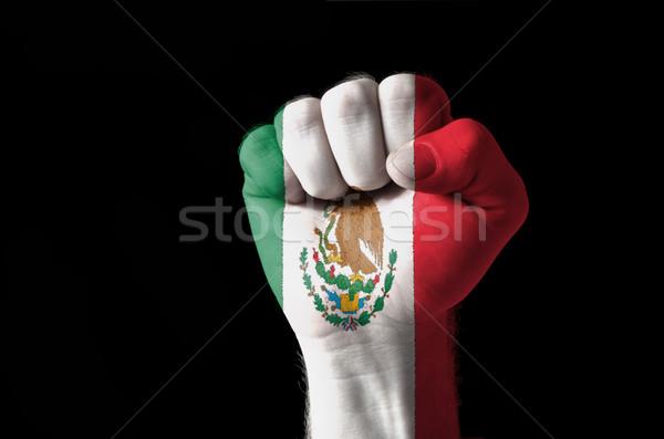 Pięść malowany kolory Meksyk banderą niski Zdjęcia stock © vepar5