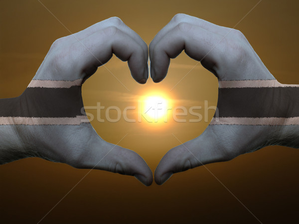 Stock photo: Heart and love gesture by hands colored in botswana flag during