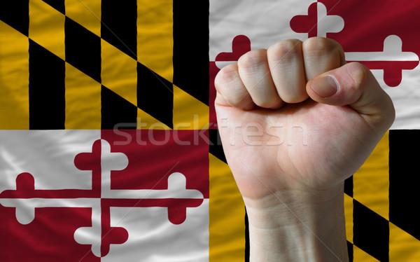 Zászló Maryland ököl teljes amerikai egész Stock fotó © vepar5
