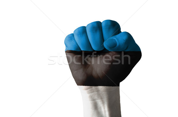 Fist painted in colors of estonia flag Stock photo © vepar5