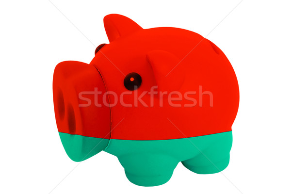 piggy rich bank in colors  national flag of belarus    for savin Stock photo © vepar5