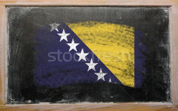 Bandera Bosnia Herzegovina pizarra pintado tiza color Foto stock © vepar5