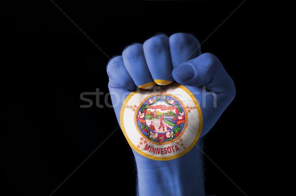 Puno pintado colores Minnesota bandera bajo Foto stock © vepar5