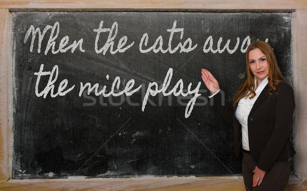 Teacher showing When the cat s away, the mice play on blackboard Stock photo © vepar5