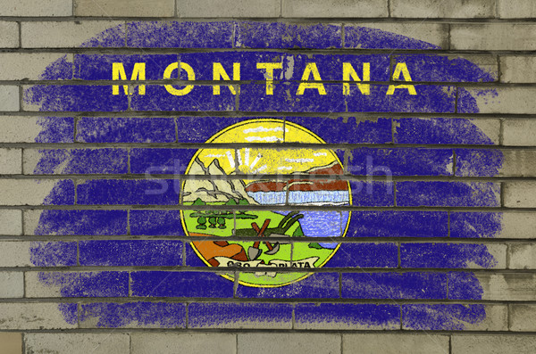Grunge bandiera Montana muro di mattoni verniciato americano Foto d'archivio © vepar5