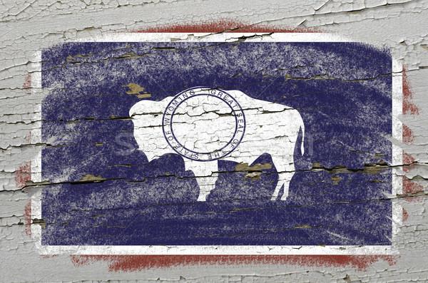 Bandeira Wyoming grunge textura preciso Foto stock © vepar5