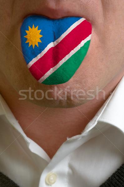 Adam dil boyalı Namibya bayrak bilgi Stok fotoğraf © vepar5