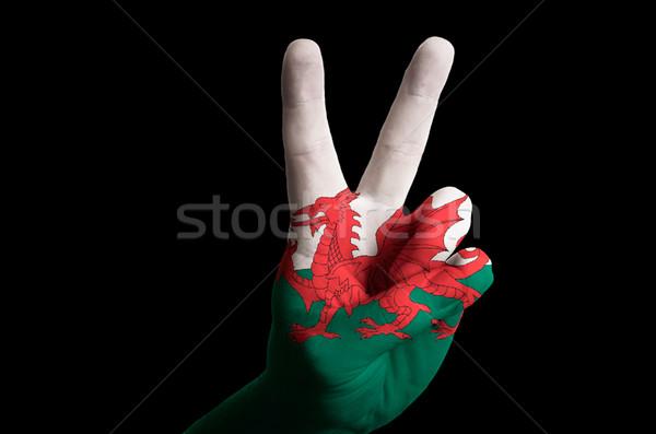 Wales zászló kettő ujj felfelé kézmozdulat Stock fotó © vepar5