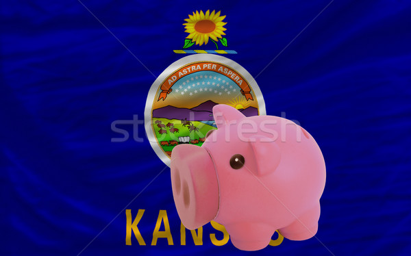piggy rich bank and  flag of american state of kansas    Stock photo © vepar5