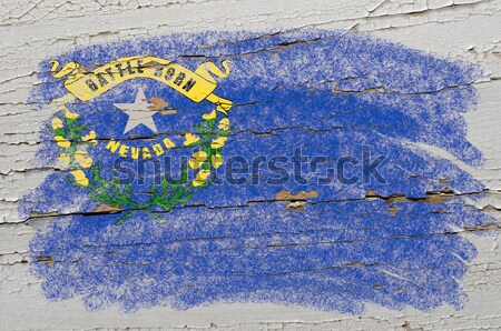 flag of US state of north carolina on grunge wooden texture prec Stock photo © vepar5