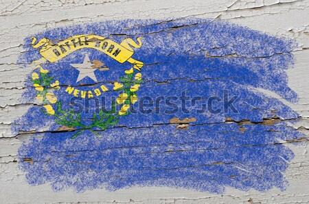 Zászló Észak-Karolina grunge fából készült textúra amerikai Stock fotó © vepar5
