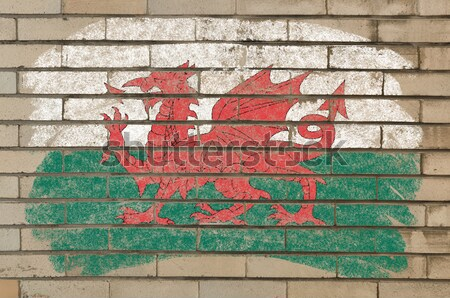 grunge flag of US state of california on brick wall painted with Stock photo © vepar5