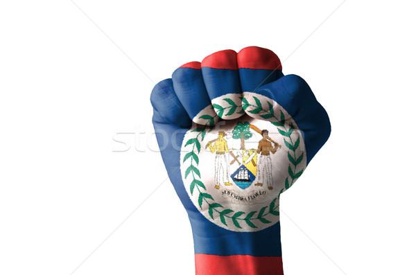 ököl festett színek Belize zászló alacsony Stock fotó © vepar5