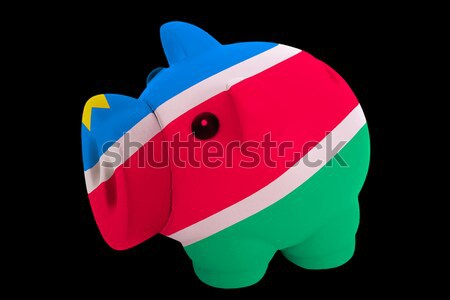 piggy rich bank in colors  national flag of namibia    for savin Stock photo © vepar5