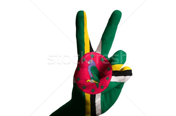 Доминика флаг два пальца вверх жест Сток-фото © vepar5