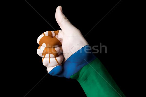 Лесото флаг большой палец руки вверх жест превосходство Сток-фото © vepar5