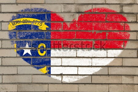 grunge flag of US state of north carolina on brick wall painted  Stock photo © vepar5