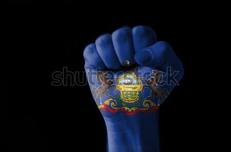 Fist painted in colors of us state of delaware flag Stock photo © vepar5