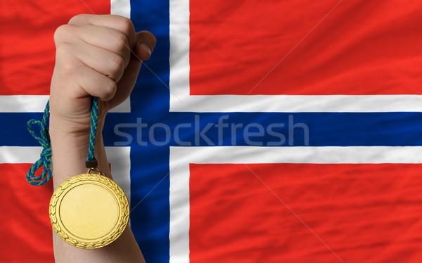 Médaille d'or sport pavillon Norvège gagnant Photo stock © vepar5