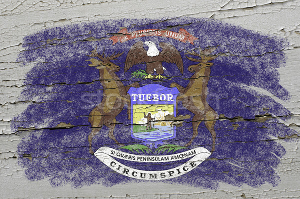 flag of US state of michigan on grunge wooden texture precise pa Stock photo © vepar5