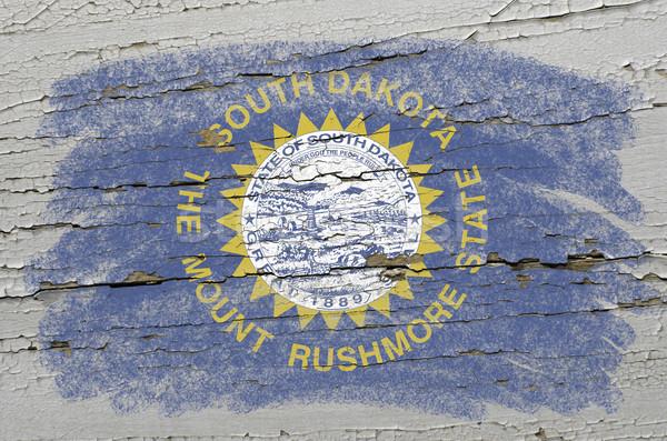 Vlag South Dakota grunge houten textuur amerikaanse Stockfoto © vepar5