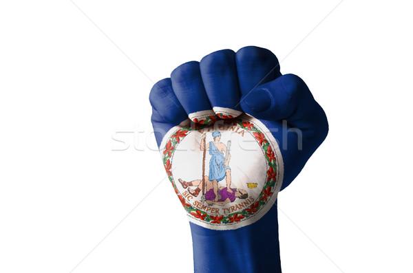 ököl festett színek Virginia zászló alacsony Stock fotó © vepar5