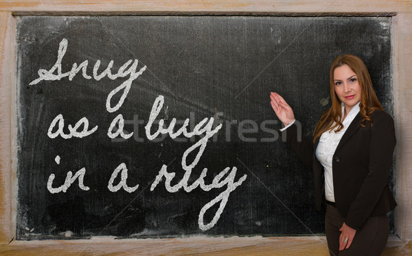 Teacher showing Snug as a bug in a rug on blackboard Stock photo © vepar5