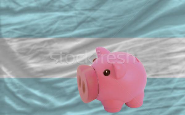 豊富な 銀行 フラグ アルゼンチン ストックフォト © vepar5
