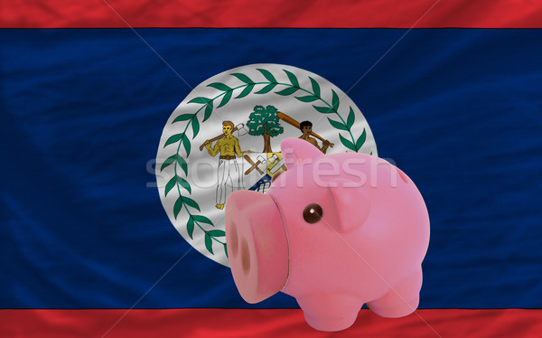 piggy rich bank and  national flag of belize    Stock photo © vepar5