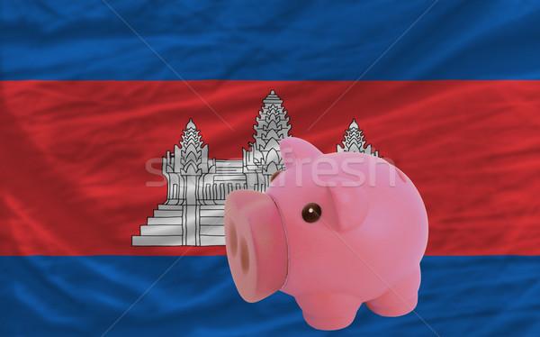 Malac gazdag bank zászló Kambodzsa takarékosság Stock fotó © vepar5