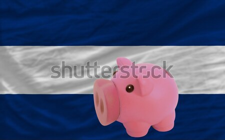 piggy rich bank and  national flag of finland    Stock photo © vepar5